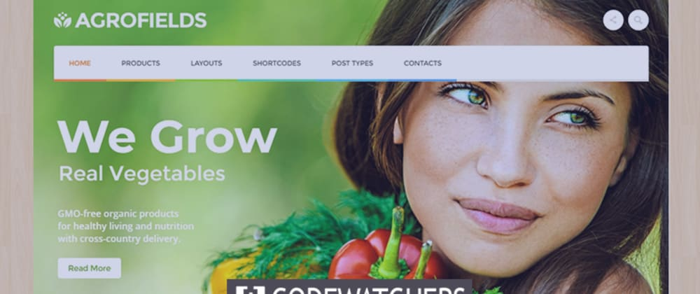 Revisión: Agrofields - Food Shop And Grocery Market WP Theme